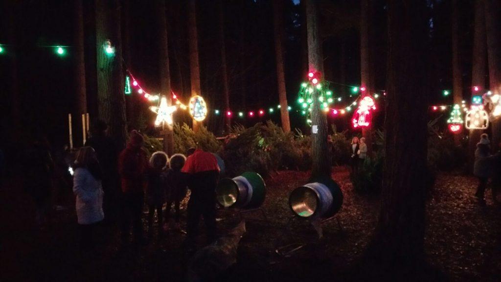 Christmas In The Woods.Christmas In The Wood Friends Of Chopwell Wood