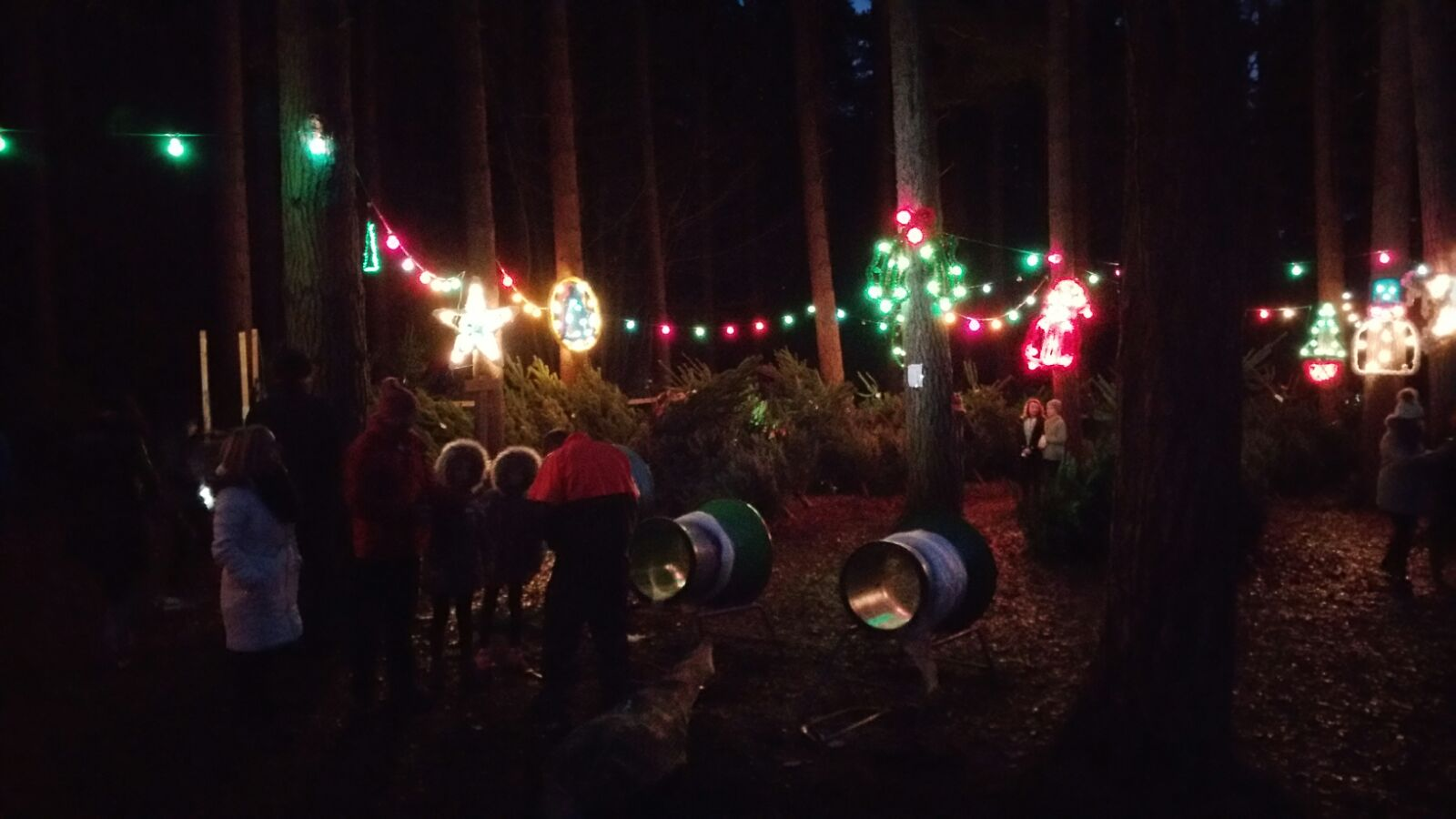 Christmas in the Wood